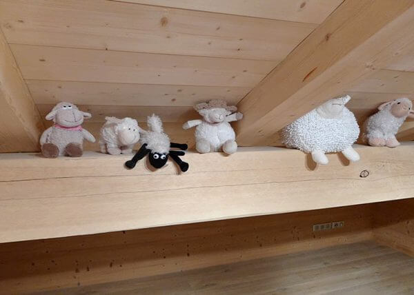 chambre mouton